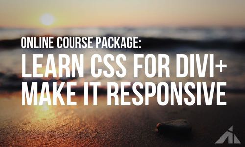 Full CSS Divi Package
